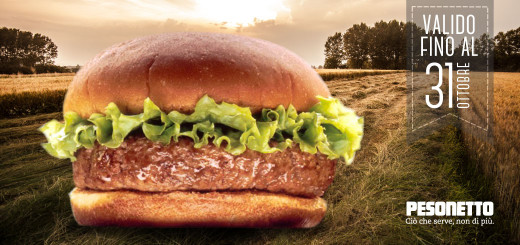 hamburger-520x245-featured